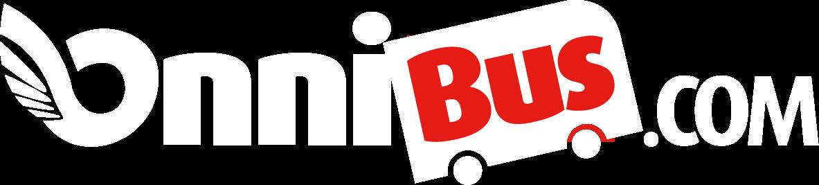 Onnibus Suomi 100